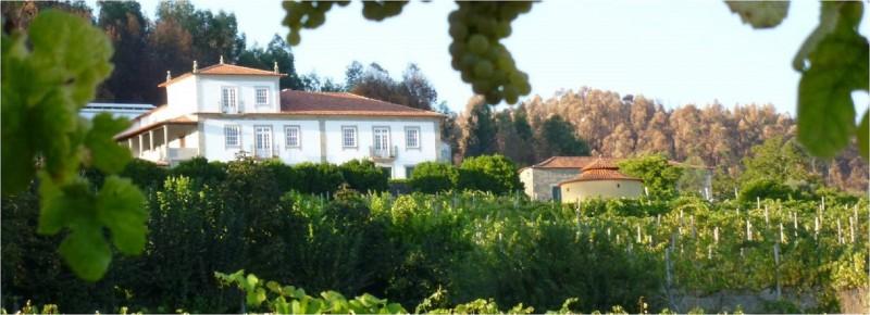 tolle Sommerweine aus dem Norden Portugals