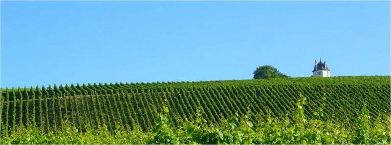Pfalz - Mosel - Nahe